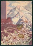 Scarpone Piccozza E Stelle Alpine Firma Illustratore 1938 FG V214 - Unclassified