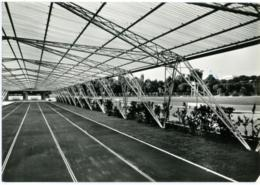 ROMA  EUR  Pista Coperta Dei 100 Metri  100 Metre Dash - Athletics