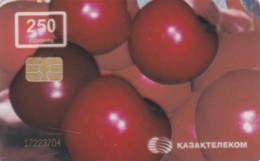 PHONE CARD KAZAKISTAN (E63.56.6 - Kazachstan