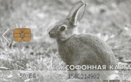 PHONE CARD RUSSIA DALSVYAZ MAGADAN (E63.14.2 - Russia