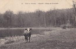 CPA CHAVILLE 92 - Forêt De Meudon - Etang Des Ecrevisses - Chaville