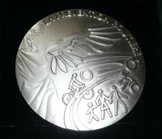 Rare Médaille En Bronze Argenté, La Prévention Routière, Grande Médaille De L'Ordre Du Conducteur, En Boite - Firma's