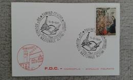 1977 - 50° ADUNATA NAZIONALE ALPINI - TORINO - ANNULLO SPECIALE - Altri