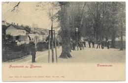 Souvenir De Bienne Promenade - Unused C1902 - Artist Atelier H Guggenheim & Co - BE Berne