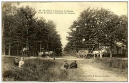 91 - Mainville - Forêt De Sénart - Allée Du Chêne Dantin - Sénart