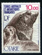 Terres Australes PA 1977 Yvert 48 ** TB Bord De Feuille - Poste Aérienne