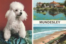 Postcard - Mundesley - Two Views And Dog  Card No.3nf51 Posted  19th Aug 1969 Very Good - Sin Clasificación
