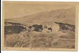 MONT LIBAN - AINZEHALTA - Vue Générale... Bâtiment - Lebanon