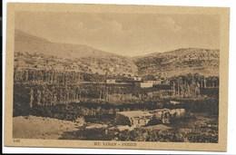 MONT LIBAN - JEZZIN - Vue D'ensemble... - Lebanon