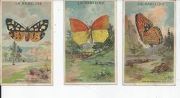 LOT DE 6 CARTES  LA KABILINE 10,5 Sur 6,5  PAPILLONS - Advertising