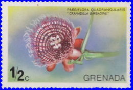 Grenade 1975. ~ YT 577** - Passiflora Quadrangularis - Grenada (1974-...)
