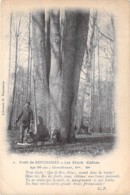 ARBRE Tree - 28 Fôret De SENONCHES (28) Les 8 CHENES ( 306 Ans En 1906) CPA - Bome Boom Albero árbol Oak Eiche Eik - Arbres