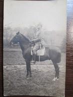 Austro-Hungary K.u.K. Cavalry Officer Horseman - Regiments