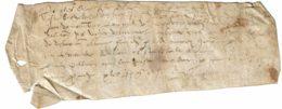 Parchemin Manuscrit Sur Peau - Non Daté (vers 1550 / 1600) - Ecriture Un Peu Atténuée Par L'âge - 19 X 6,5 Cm - Manuscrits