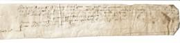 Parchemin Manuscrit Sur Peau - Non Daté (vers 1550 / 1600) - Ecriture Un Peu Atténuée Par L'âge - 30 X 5 Cm - Manuscrits
