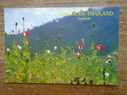 Thailand , Chiang Rai , Opium Field , Northern Thailand - Thailand