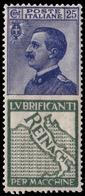"""MNH ) REGNO D'ITALIA 1924   Pubblicitari. 25c. """"Reinach""""   Provenienza   Collezione """"Nimue""""   MNH........ - 1900-44 Vittorio Emanuele III"""