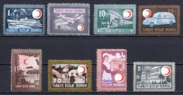 1946 TURKEY 69TH ANNIVERSARY OF THE RED CRESCENT MINT WITHOUT GUM - Charity Stamps