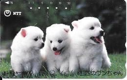 CARTE-MAGNETIQUE-JAPON-CHIOTS BLANCS-UTILISE-TBE - Honden
