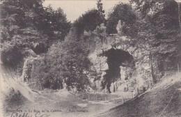 Bruxelles, Le Bois De La Cambre, Pont Rustique (pk69583) - Bossen, Parken, Tuinen