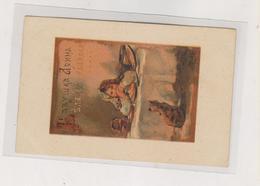 RUSSIA Elisaveta Merkuryevna Bem Nice Postcard - Russie