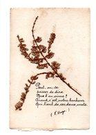 Poeme De Victor Hugo Avec Collage De Fleurs Seches (20-835) - Philosophy