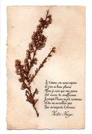 Poeme De Victor Hugo Avec Collage De Fleurs Seches (20-836) - Philosophy
