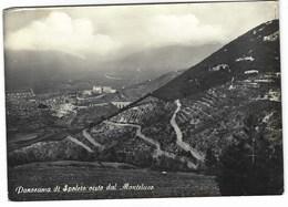 CL161 -  PANORAMA DI SPOLETO VISTO DA MONTELUCO PERUGIA 1960 - Other Cities
