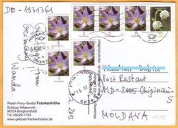 2013 Germany  Moldova Flowers, Flora Postcard - BRD