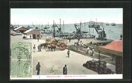 AK Montevideo, Muelles De La Aduana - Uruguay