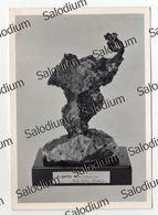 ARGENTO Milano Argento Nativo Ag Sassonia Saxonia Miniere SARRABUS Sardegna Hulfe Galles Freiberg Silver Museo Mineral - Milano (Milan)