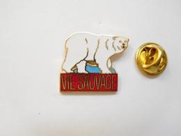Beau Pin's En EGF , Média Journal , Vie Sauvage , Ours - Animales