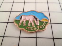 115a Pin's Pins / Beau Et Rare / THEME : ANIMAUX / CHEVAL PONEY PECH PETIT - Natation