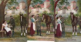 DC2237 - Motiv Pferd Horese Pferdepostkarte Pferde Lot 3 Karten - Chevaux