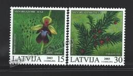 Lettonie – Latvia – Letonia 2003 Yvert 558-59, Protected Flora, Wild Flowers - MNH - Latvia