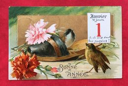 1er Janvier Et Oiseau - Other