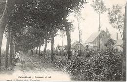 67 Calmpthout Kalmthout Bosmansdreef. . Hoelen 6907 - Kalmthout