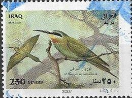 IRAQ 2007 Birds - 250d - Merops Superciliosus (Olive Bee-eater) FU - Iraq