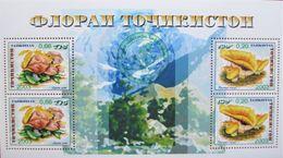 Tajikistan  2004   Mushrooms   M/S  Green  Overprint  MNH - Mushrooms