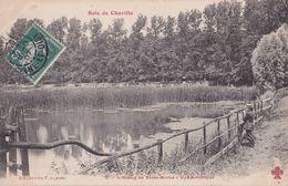 CPA CHAVILLE 92 - L'Etang De Brisemiche - Chaville