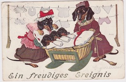 Teckel, Dachshund, Ehe=Glueck Signed, Beautiful Cpa Postcard 1909 Kid Dogs - Hunde