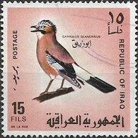 IRAQ 1968 Iraqi Birds - 15f - Jay FU - Iraq
