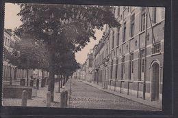 S52 /  Termonde Dendermonde College Betail - Belgien