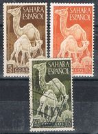Serie Completa SAHARA Español 1951, Dia Sello, Dromedarios, Num 91-93 */º - Sahara Spagnolo