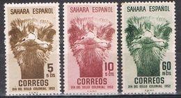 Serie Completa SAHARA Español 1952, Dia Sello, Avestruz, Num 98-100 * - Sahara Spagnolo