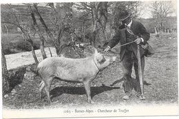04 BASSES ALPES - Chercheur De Truffes Et Son Cochon - France