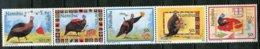 Namibia Mi# 854-7 Postfrisch/MNH - Fauna Birds - Namibia (1990- ...)