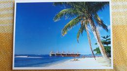 CPM POLYNESIE FRANCAISE BALI HAI PLAGE DE MOOREA   TEVA SYLVAIN 365  PACIFIC PROMOTION - Polynésie Française