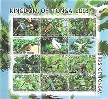 TONGA 2013 BIRDS  MNH - Autres