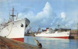 Dieppe (76) - Bananier Dans Le Port - Fort Richelieu - Dieppe